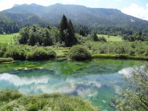 Sava Dolinka